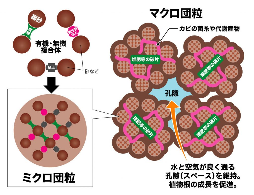 団粒構造形成の模式図(培養土とは何か)
